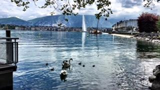 RunSoleRun_Sole Bassett_Geneve Marathon 10_entrenamiento_Leman